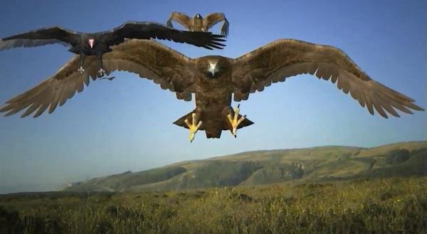 birdemic review birds