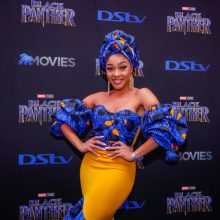 Black Panther South African Red Carpet and Premiere