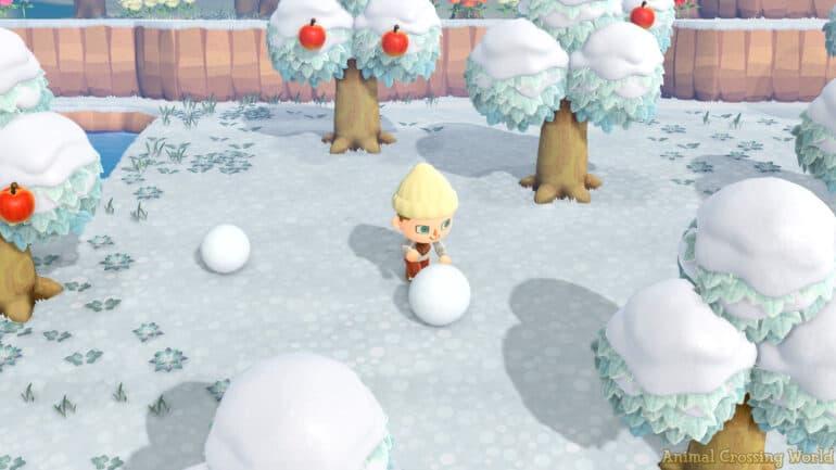 Animal Crossing New Horizons Summer