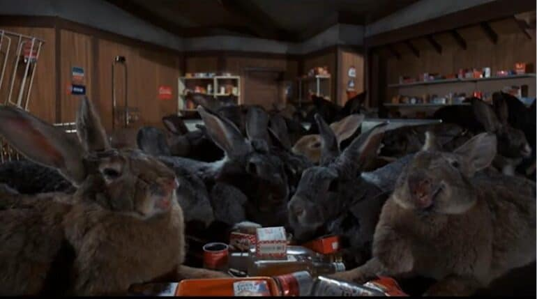 Night of the Lepus Bunny Rabbit Scary Scariest